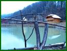 Озеро для риболовлі